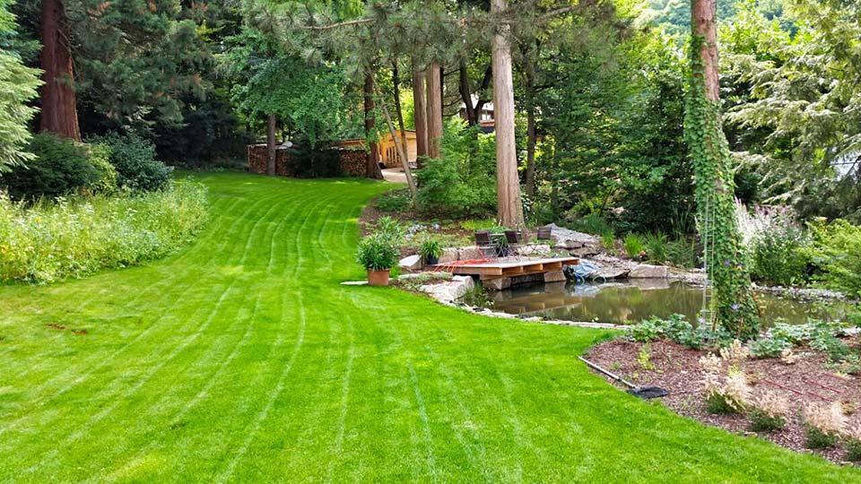 Garten for Gartengestaltung ohne geld